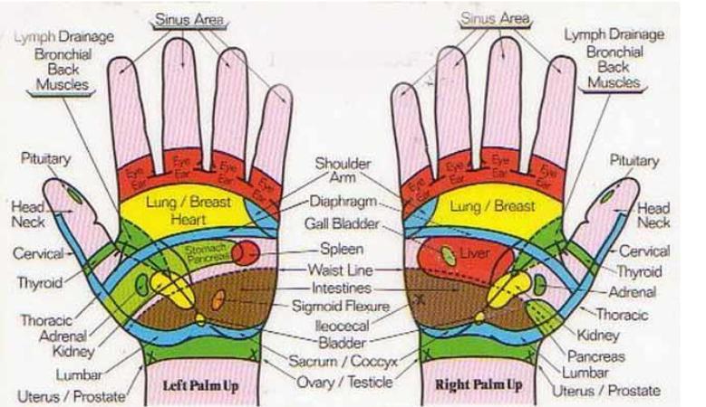 Reflexology-Hands